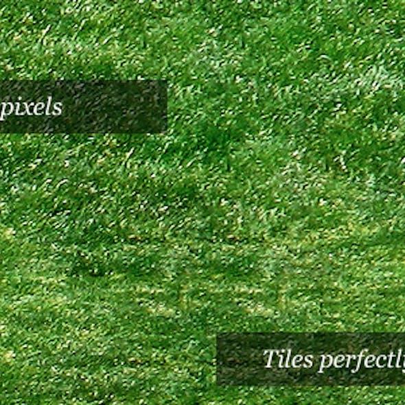 Grass Texture I