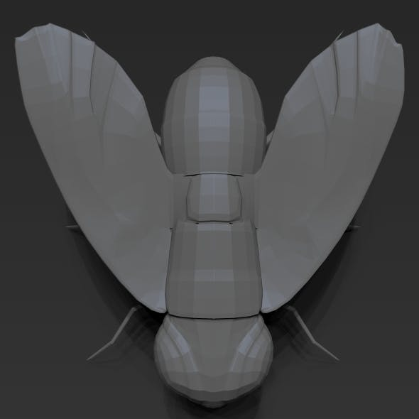 Fly Low Poly - 3DOcean Item for Sale
