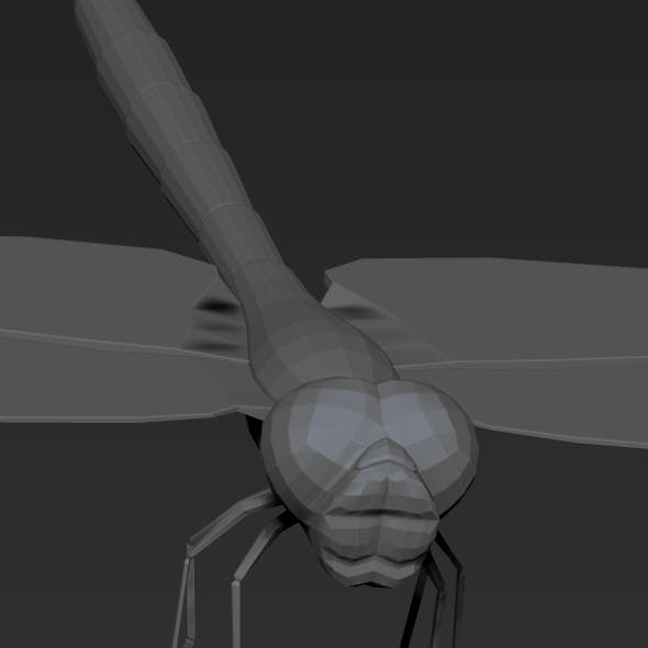 Dragonfly low poly