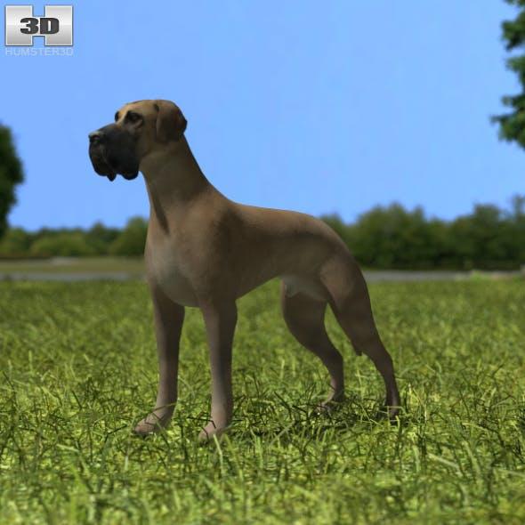 Great Dane - 3DOcean Item for Sale
