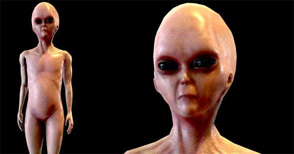 Realistic Alien 1 - 3DOcean Item for Sale