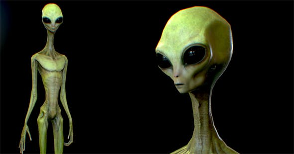 Realistic Alien 6 - 3DOcean Item for Sale
