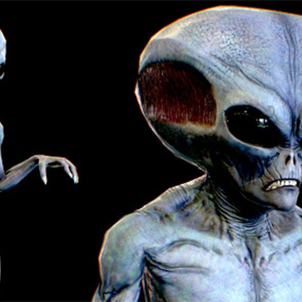 Realistic Alien 7