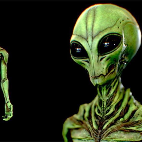 Realistic Alien 9