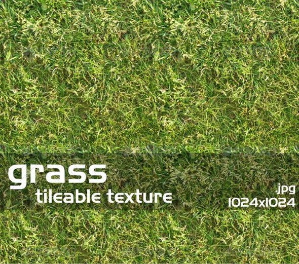 Grass Texture 1 - 3DOcean Item for Sale