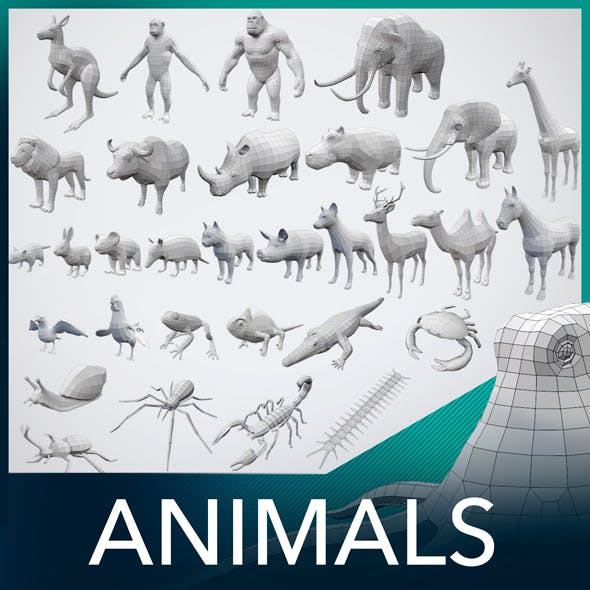 32 Animals Base Meshes
