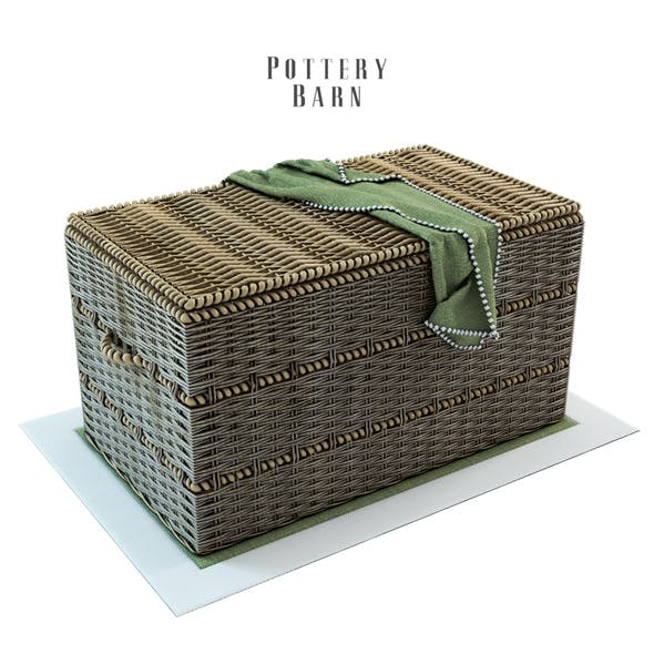 Pottery Barn Woven Trunk with Rope Handles