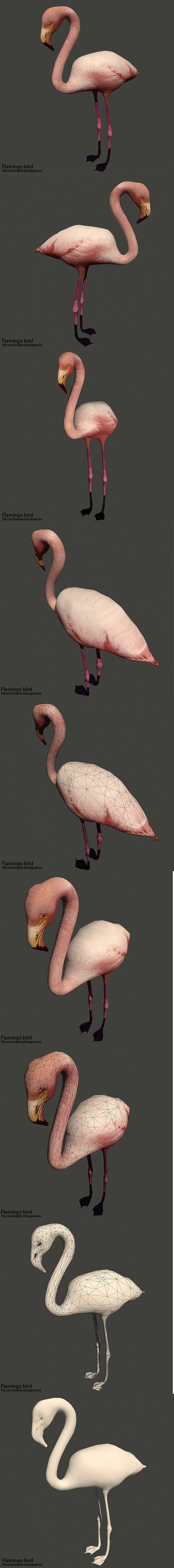 Flamingo bird ( Full Textures ) - 3DOcean Item for Sale