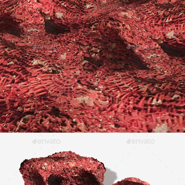 Red Coral Seamless Texture