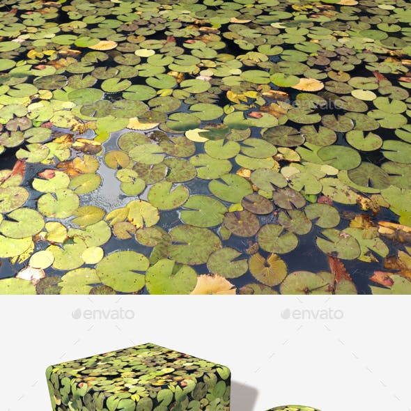 Lily Pad Pond Water Seamless Texture By Lucky Fingers 3docean