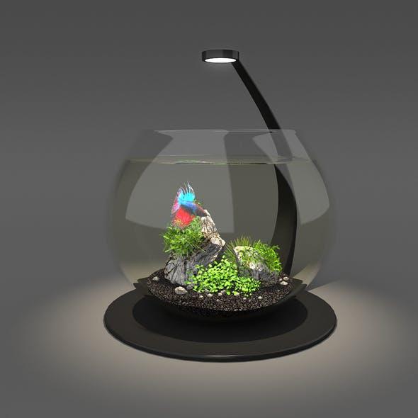Aquarium bowl - 3DOcean Item for Sale