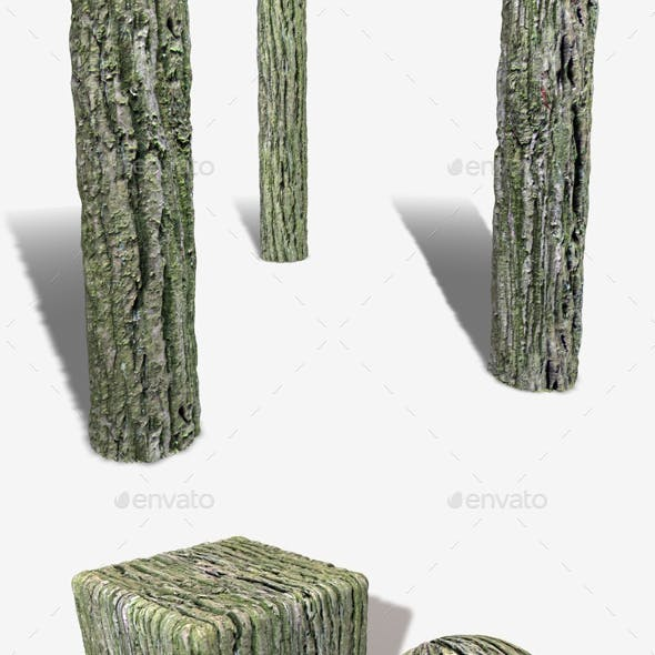 Thick Tree Bark Seamless Texture