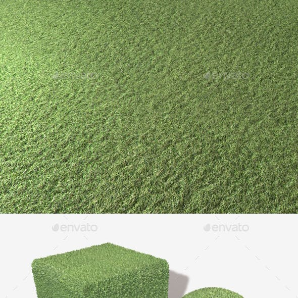 Artificial Plastic Turf Seamless Texture