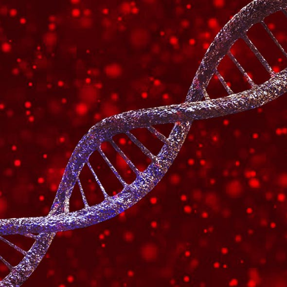 DNA Deoxyribo Nucleic Acid - 3DOcean Item for Sale