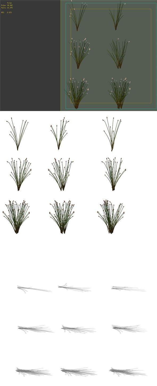 Game Model - prairie scene - Desert Plants 02 01 - 3DOcean Item for Sale