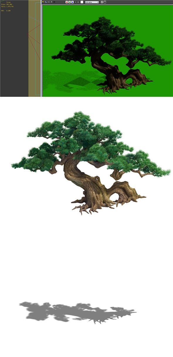 Game Model - Taoist comprehension scene - a pine 01 - 3DOcean Item for Sale