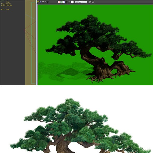 Game Model - Taoist comprehension scene - a pine 01