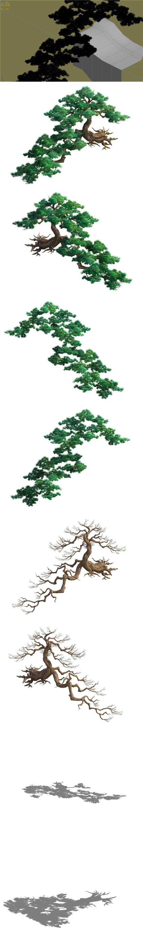 Game Model - Taoist comprehension scene - Pine 01 - 3DOcean Item for Sale