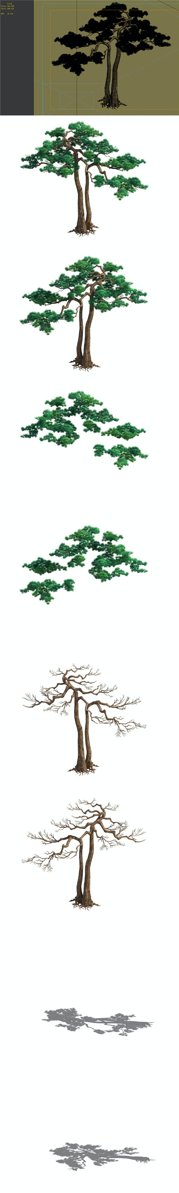 Game Model - Taoist comprehension scene - Pine 03 01 - 3DOcean Item for Sale