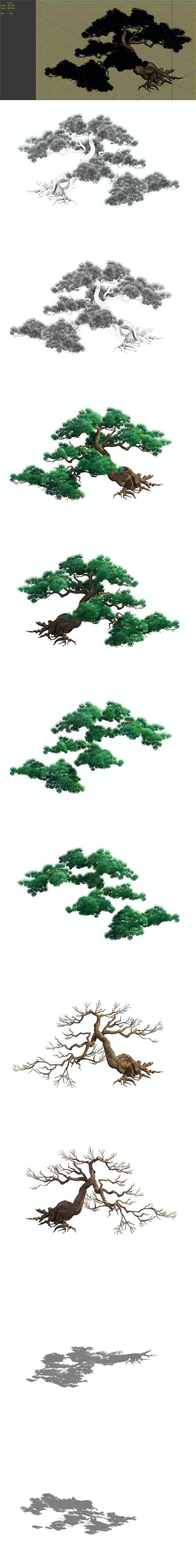 Game Model - Taoist comprehension scene - Pine 04 01 - 3DOcean Item for Sale