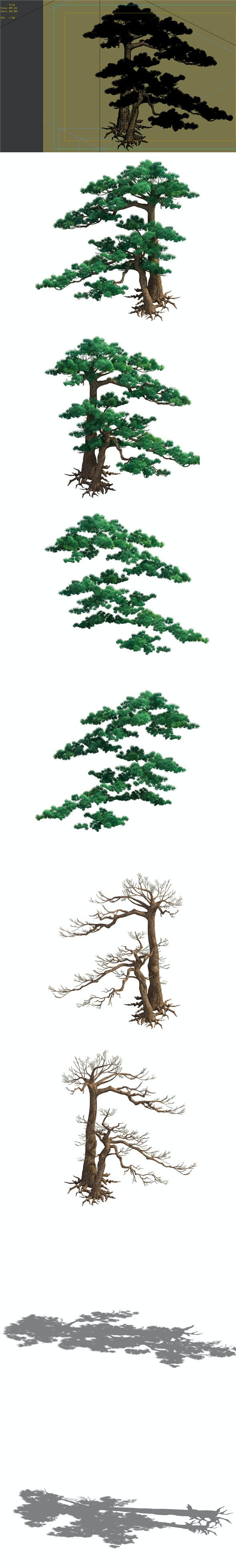 Game Model - Taoist comprehension scene - Pine 05 01 - 3DOcean Item for Sale