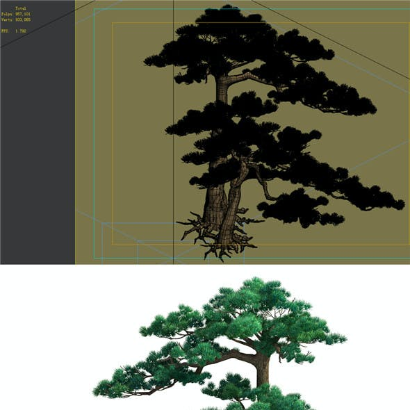Game Model - Taoist comprehension scene - Pine 05 01
