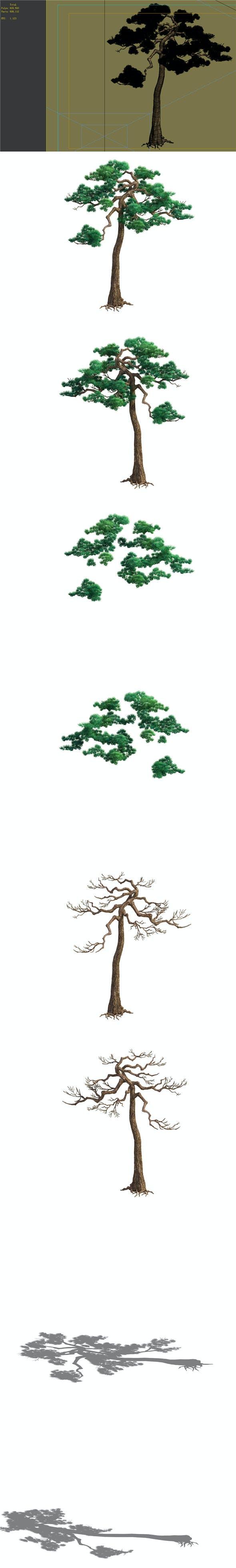 Game Model - Taoist comprehension scene - Pine 08 01 - 3DOcean Item for Sale