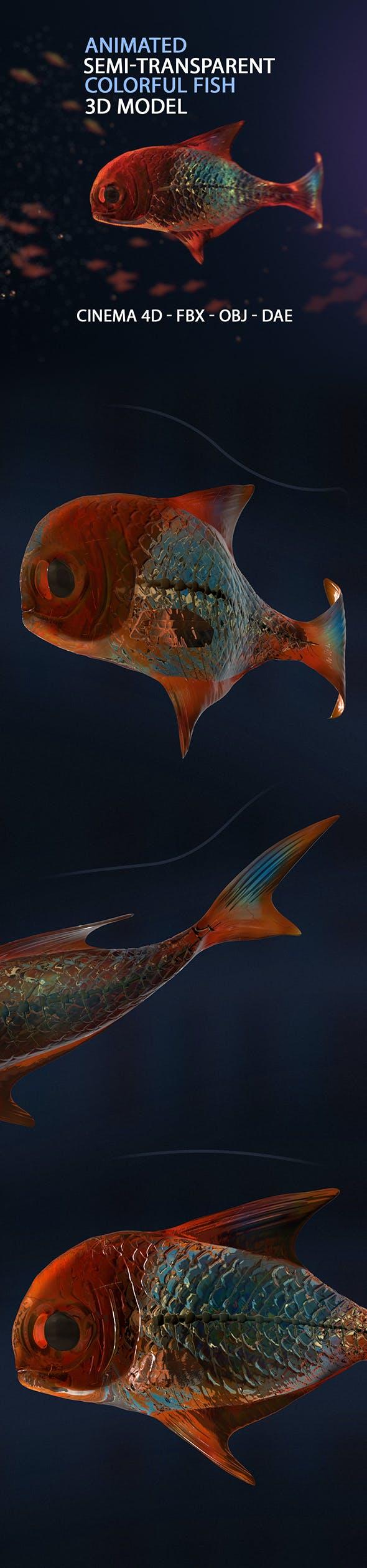 Animated Semi-transparent Fish Model - 3DOcean Item for Sale