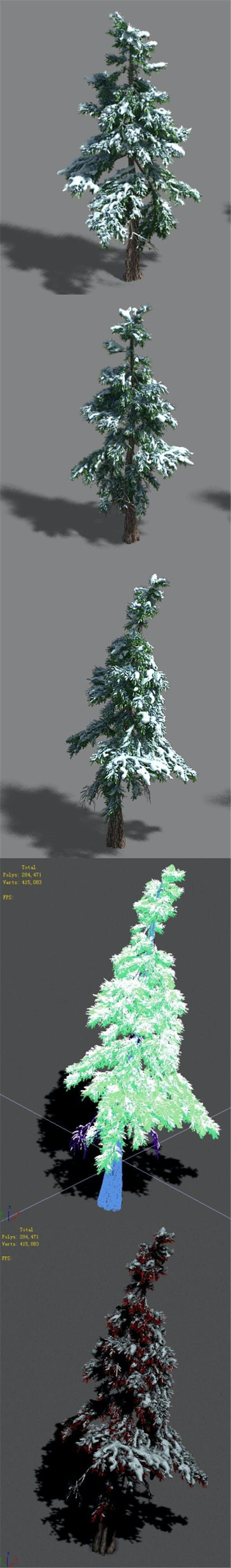 Ice and Snow - Cedar 01 - 3DOcean Item for Sale