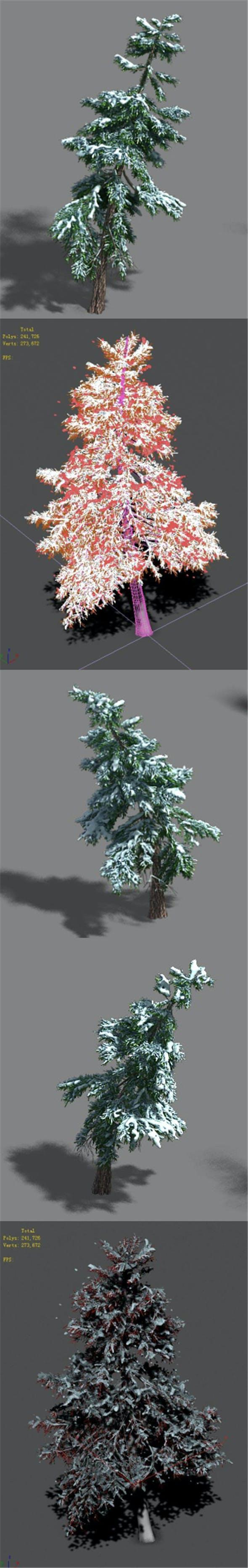 Ice and Snow - Cedar 02 - 3DOcean Item for Sale