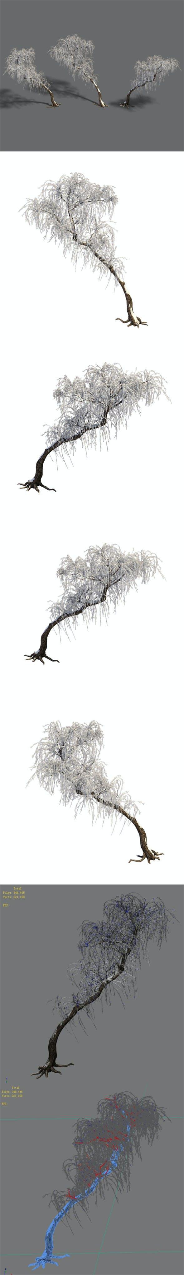 Winter snow - tree - 3DOcean Item for Sale