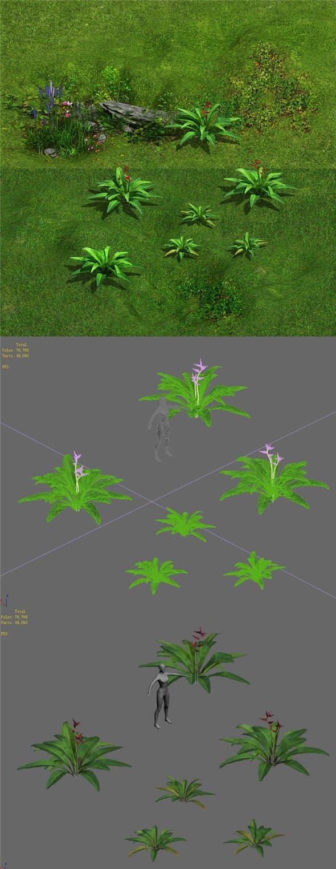 Ferns 01 - 3DOcean Item for Sale