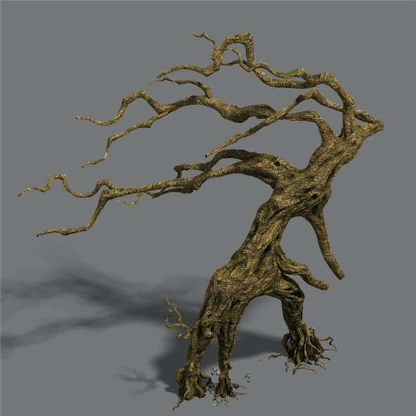 Strange - dead tree
