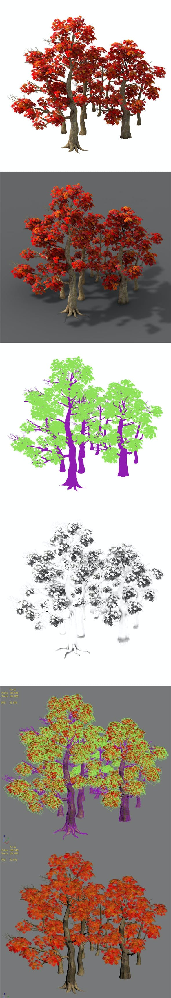 Forest - Maple Trees 17 - 3DOcean Item for Sale