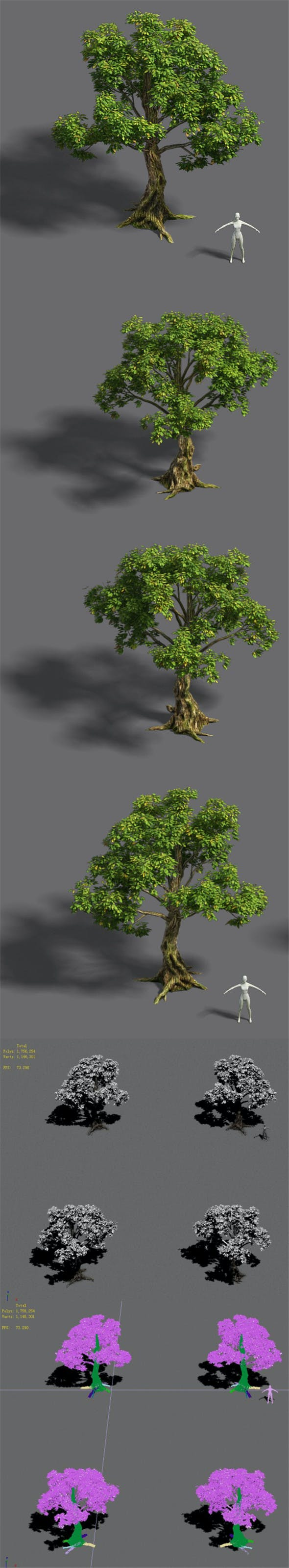 Forest - Tree 20 - 3DOcean Item for Sale