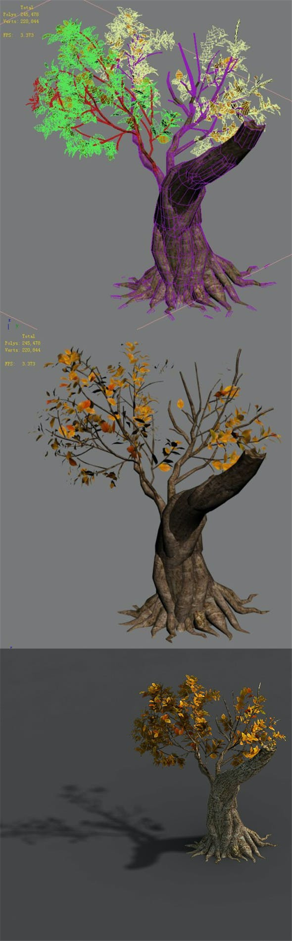 Forest - Trees 16 - 3DOcean Item for Sale