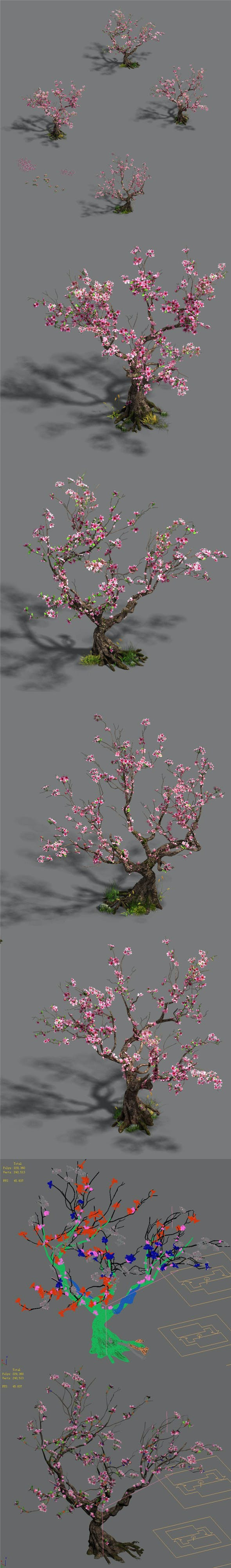Forest - Peach Blossom Tree 21 - 3DOcean Item for Sale