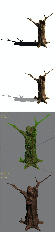 Desert - dead tree 11 - 3DOcean Item for Sale