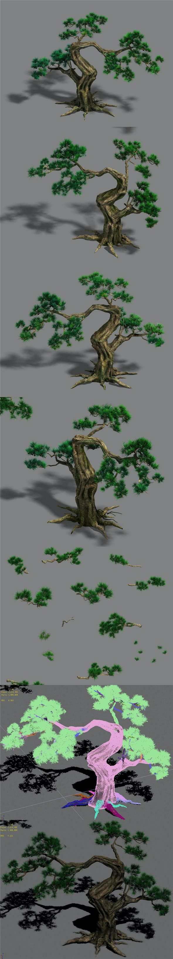 Forest - Pine 12 - 3DOcean Item for Sale