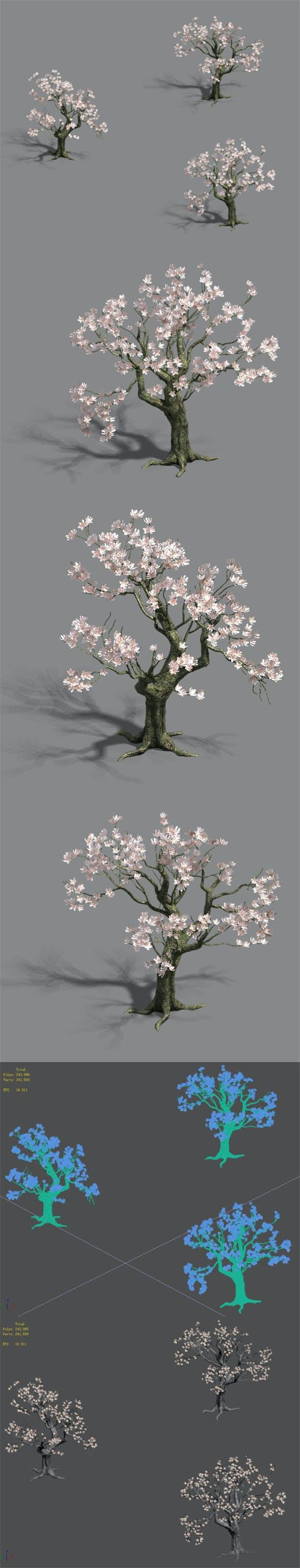 Trees - flowers tree - 3DOcean Item for Sale