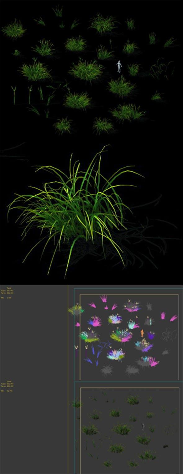Wild plants - flowers 03 - 3DOcean Item for Sale