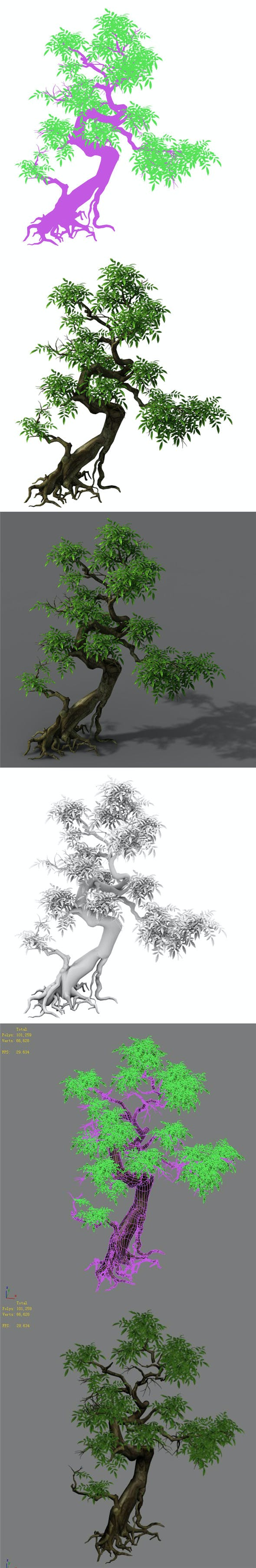 Plant - Green Tree 2 - 3DOcean Item for Sale