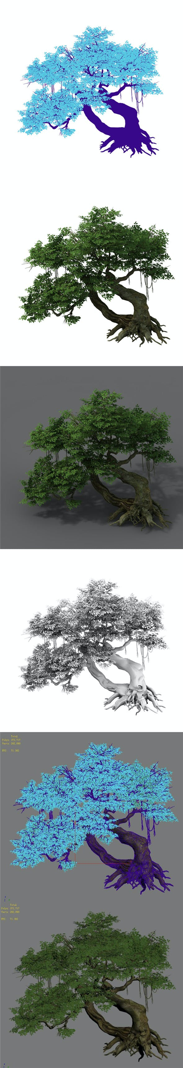 Plant - banyan tree 04 - 3DOcean Item for Sale