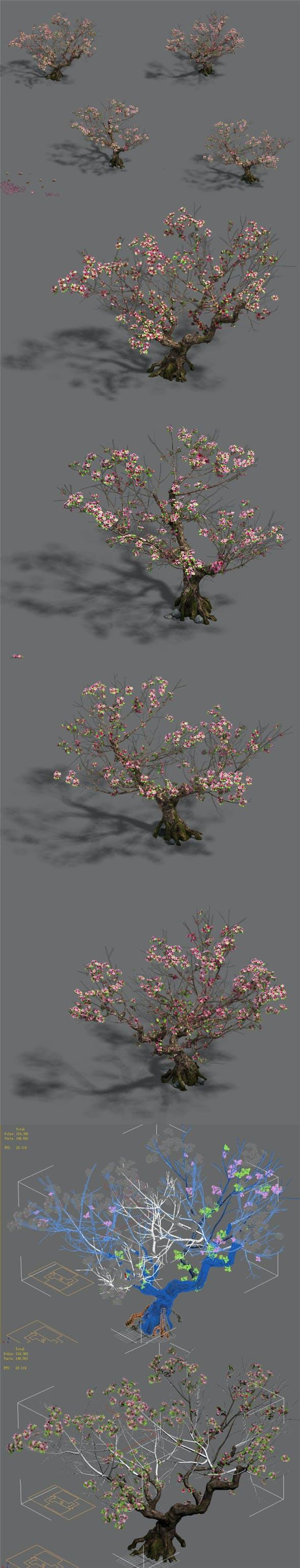 Plant - Peach Tree 18 - 3DOcean Item for Sale