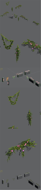 Plant - Vines 16 - 3DOcean Item for Sale