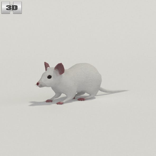 Mouse White - 3DOcean Item for Sale