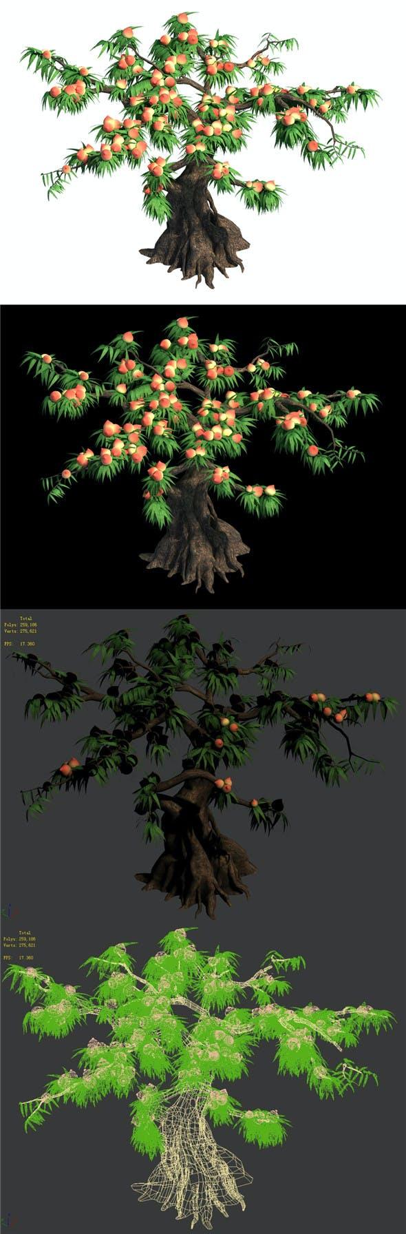 Plant - peach tree 032 - 3DOcean Item for Sale
