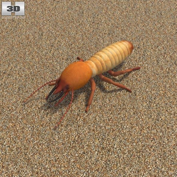 Termite - 3DOcean Item for Sale