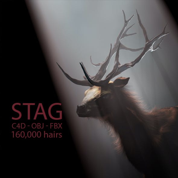 Stag With Hair 3D Model