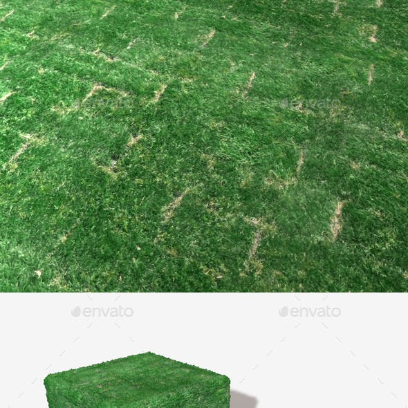 Freshly Laid Turf Patches Texture
